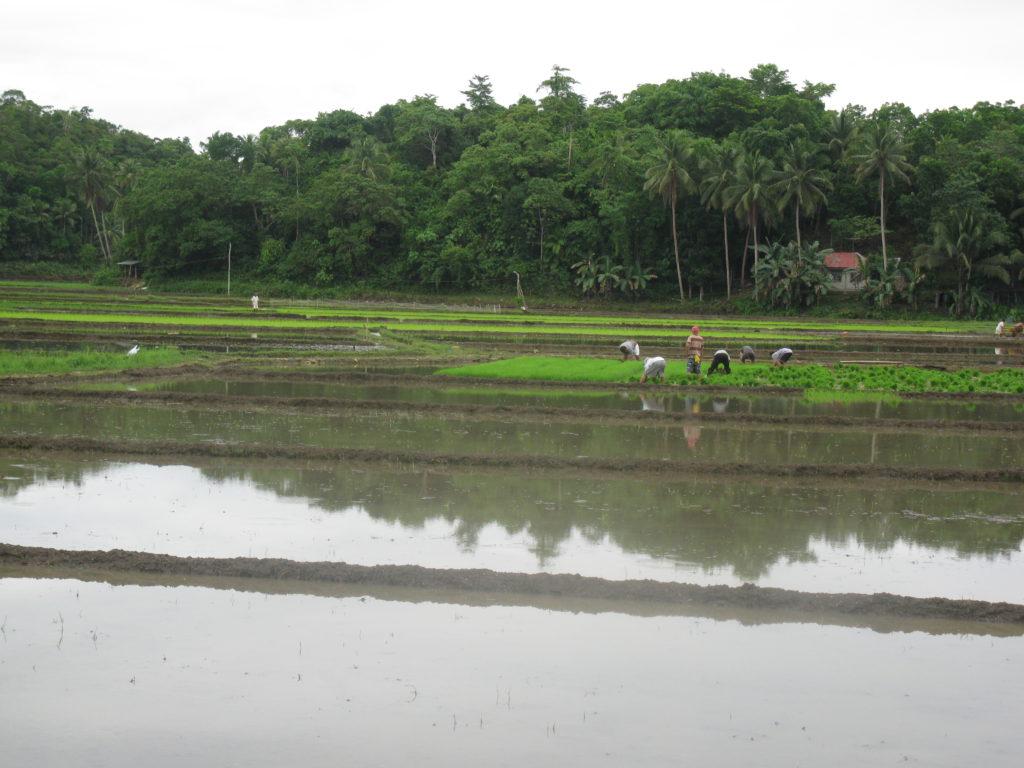 Filipínský Bohol na skútru